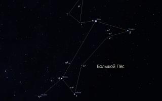 Большой Пёс — созвездие, содержащее одну из крупнейших звёзд