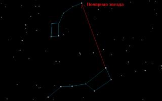 Созвездие Малая Медведица — знаменитое созвездие, наблюдаемое весь год