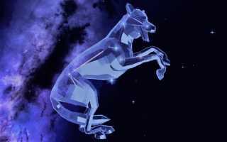 Созвездие Волк, не имеющее основной легенды