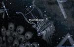 Созвездие Жертвенник с его разными именами и историями