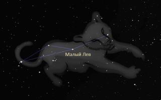 Созвездие Малый Лев — молодая небесная часть