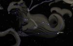 Кит — созвездие морского чудовища Посейдона
