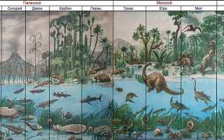 Геологические эры и хроники планеты Земля