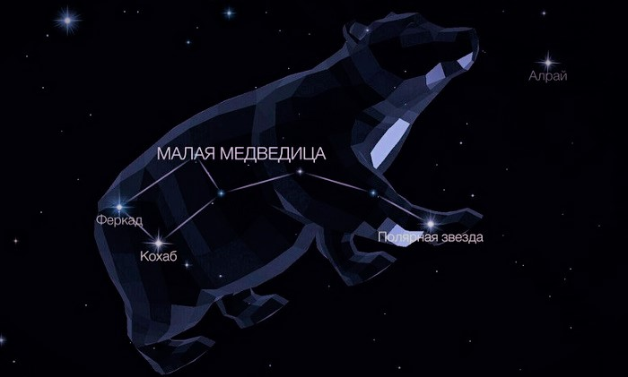 Созвездие Малая Медведица