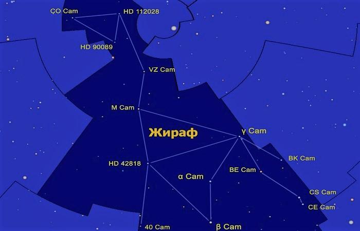 Звёзды созвездия Жираф