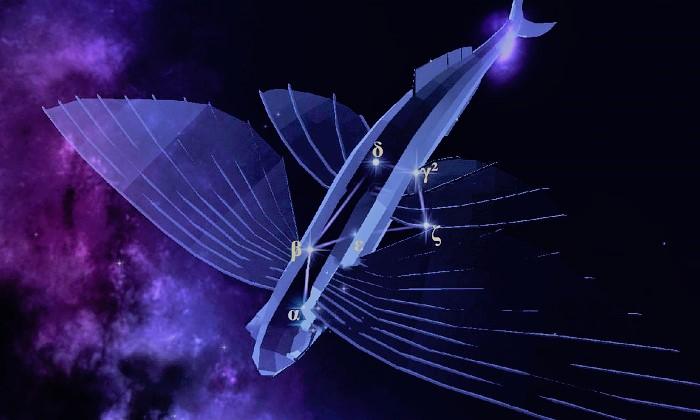 Звёзды созвездия Летучая Рыба
