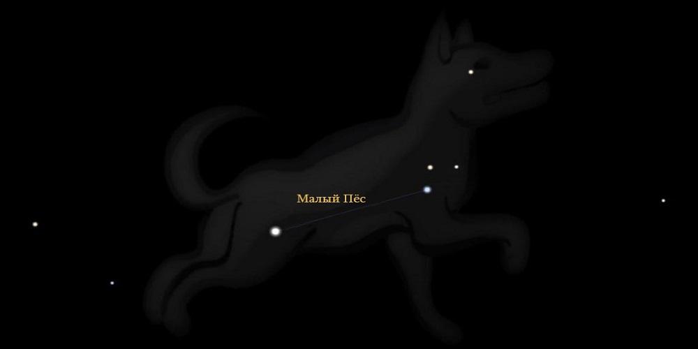 Созвездие Малый Пёс