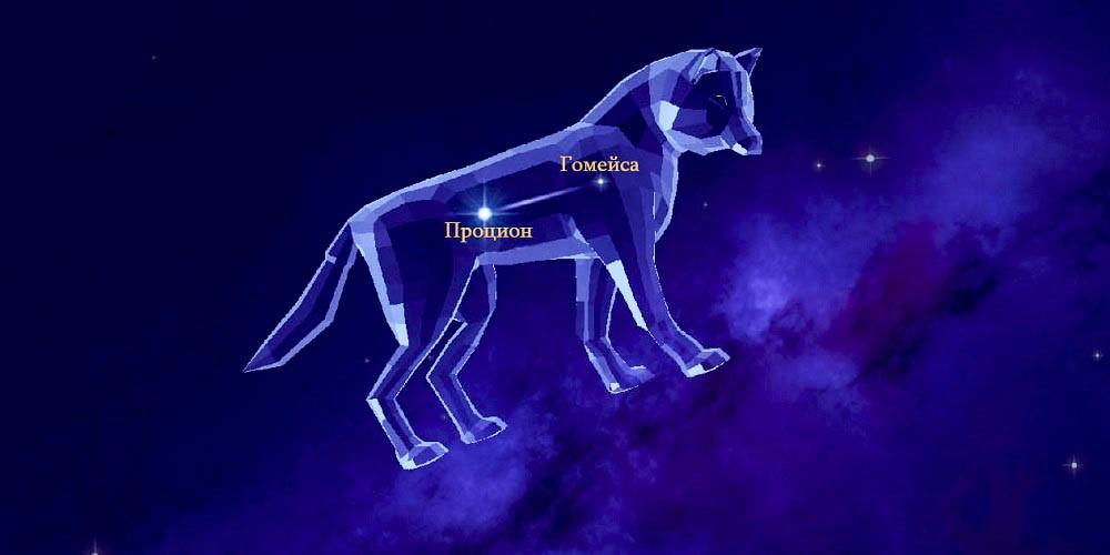 Звёзды созвездия Малый Пёс