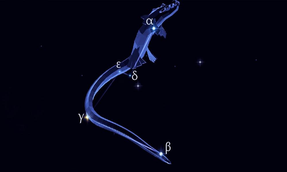 Звёзды созвездия Южная Гидра