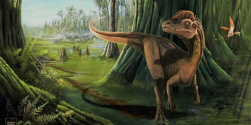 Дилофозавр - представитель юрского периода