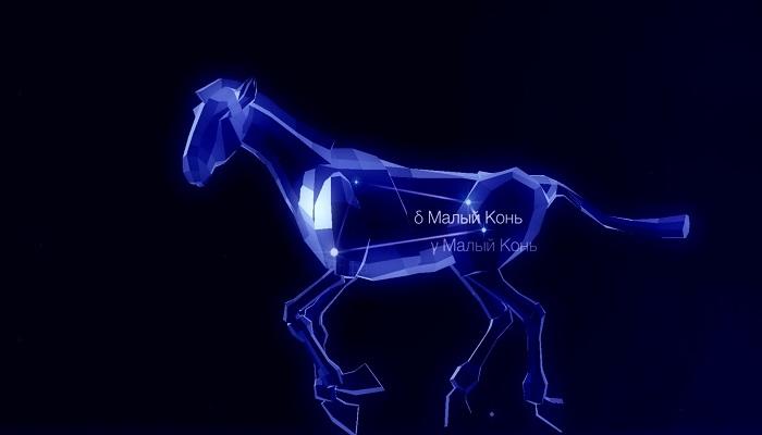 Созвездие Малый Конь