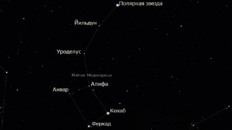 Звёзды Малой Медведицы
