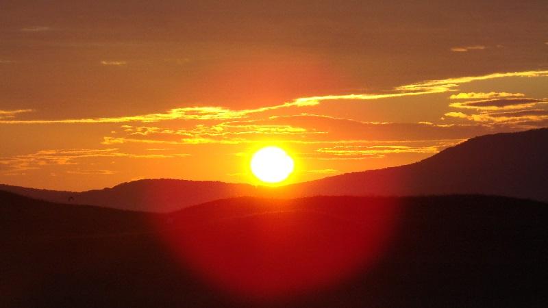 Солнце (жёлтый карлик)