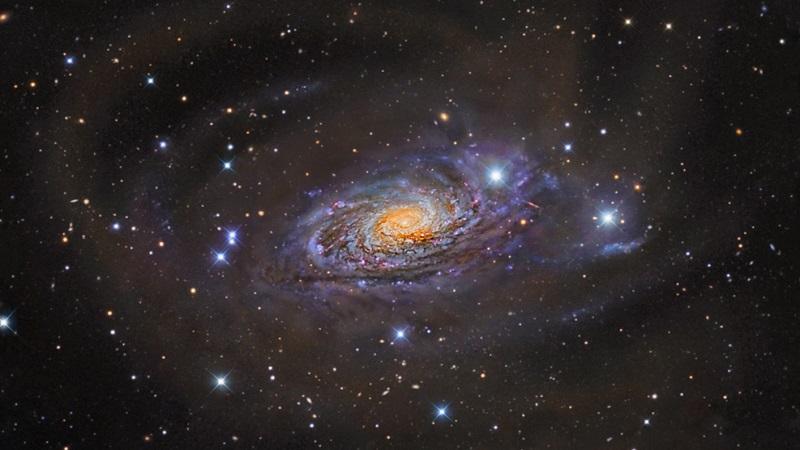 Звёздная система (галактика)