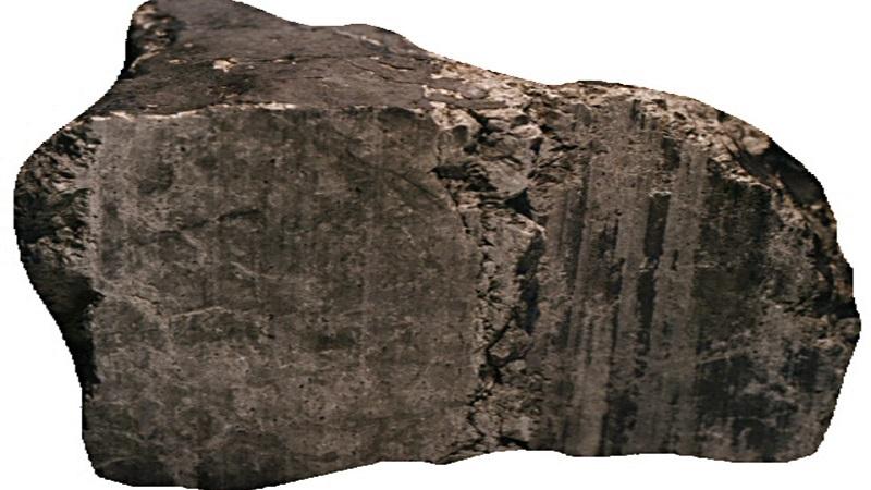 АLH84001 (самый известный марсианский метеорит)