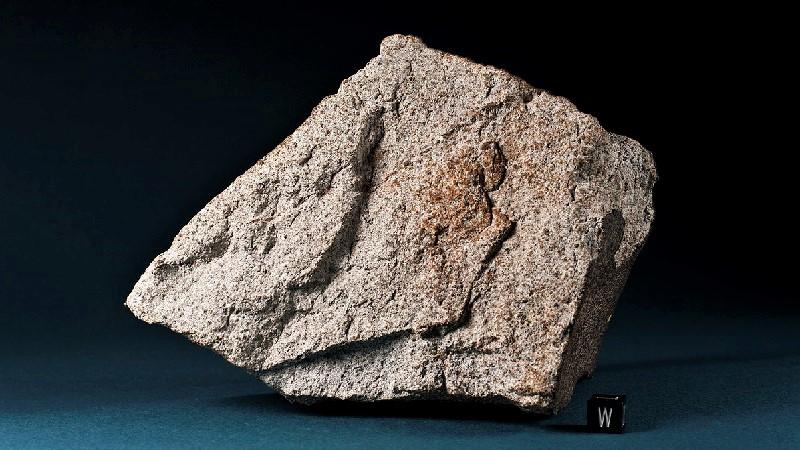 ALH 81005 (каменный)